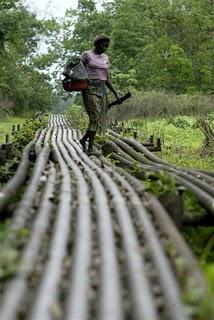 niger-delta-pipeline