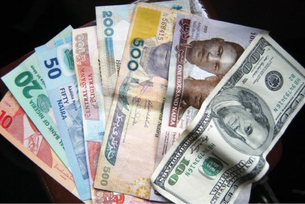 naira_notes_3