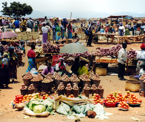 Food Security strategies