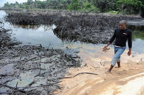 Coastal Oil Spill